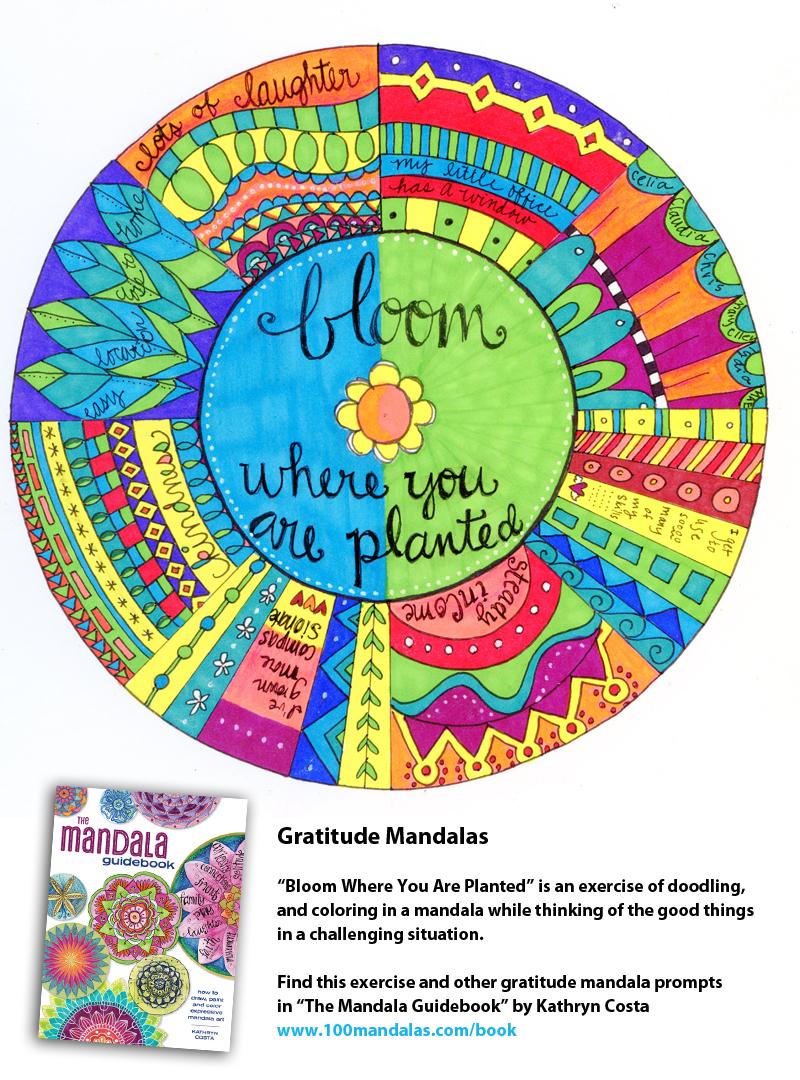 gratitude-bloom