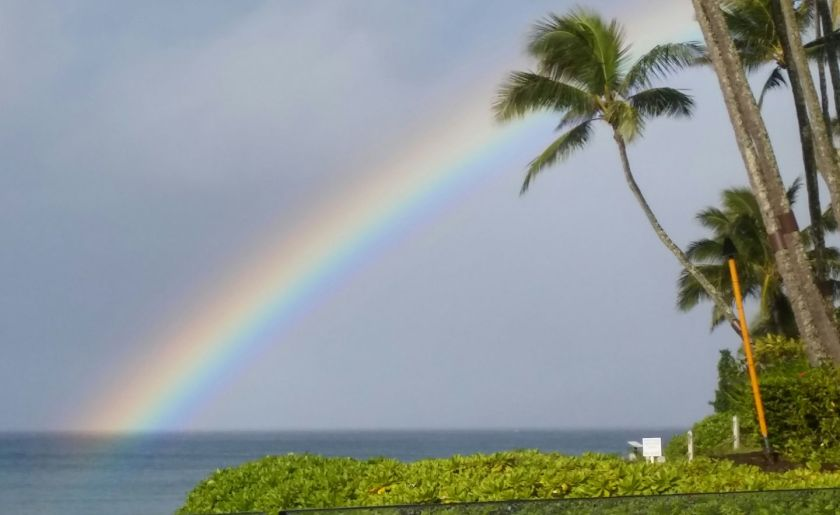 Rainbow-Hawaii